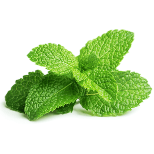 Herbal Vapors | House E-Liquid | Fresh Spearmint