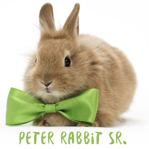 Herbal Vapors LLC | Handspun Flavors | Peter Rabbit, Sr.
